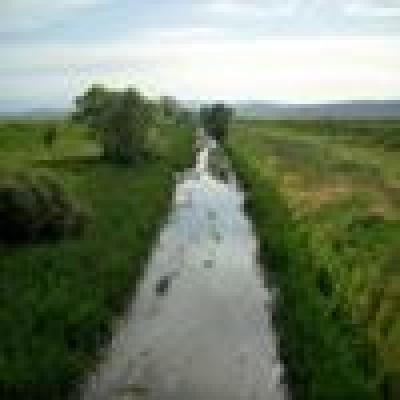 Река Арката - Щука