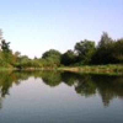 Къде кълве? /12-18 март 2011г./ - Река Лефеджа - Кефал