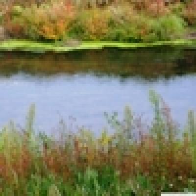 - Река Лесновска
