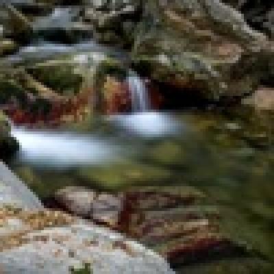 Река Тунджа - кефал
