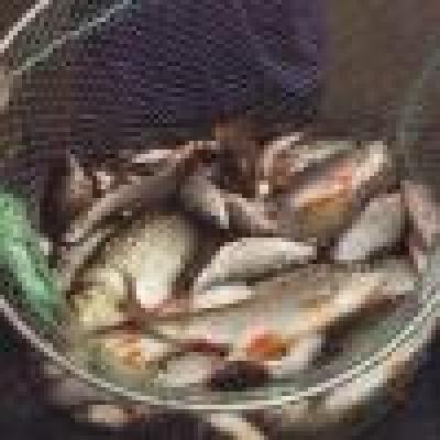 От пресата... - Динамиката на пролетния риболов