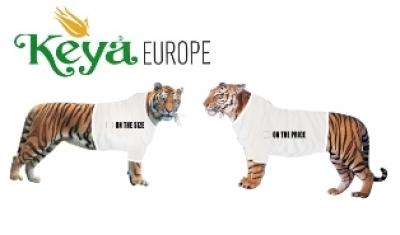 Тениски, блузи и суитчери KEYA