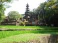 Bubo Anne Bali 2012 01