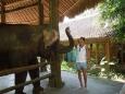 Bubo Anne Bali 2012 06